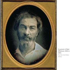 Walt Whitman, Novelist